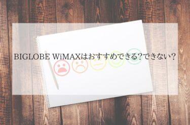 BIGLOBE WiMAX おすすめ